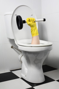 precision_toilet